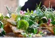 Noma-Amuse-bouche-Toast-herbs-beurre-noisette-and-vinegar-closeup-190x133