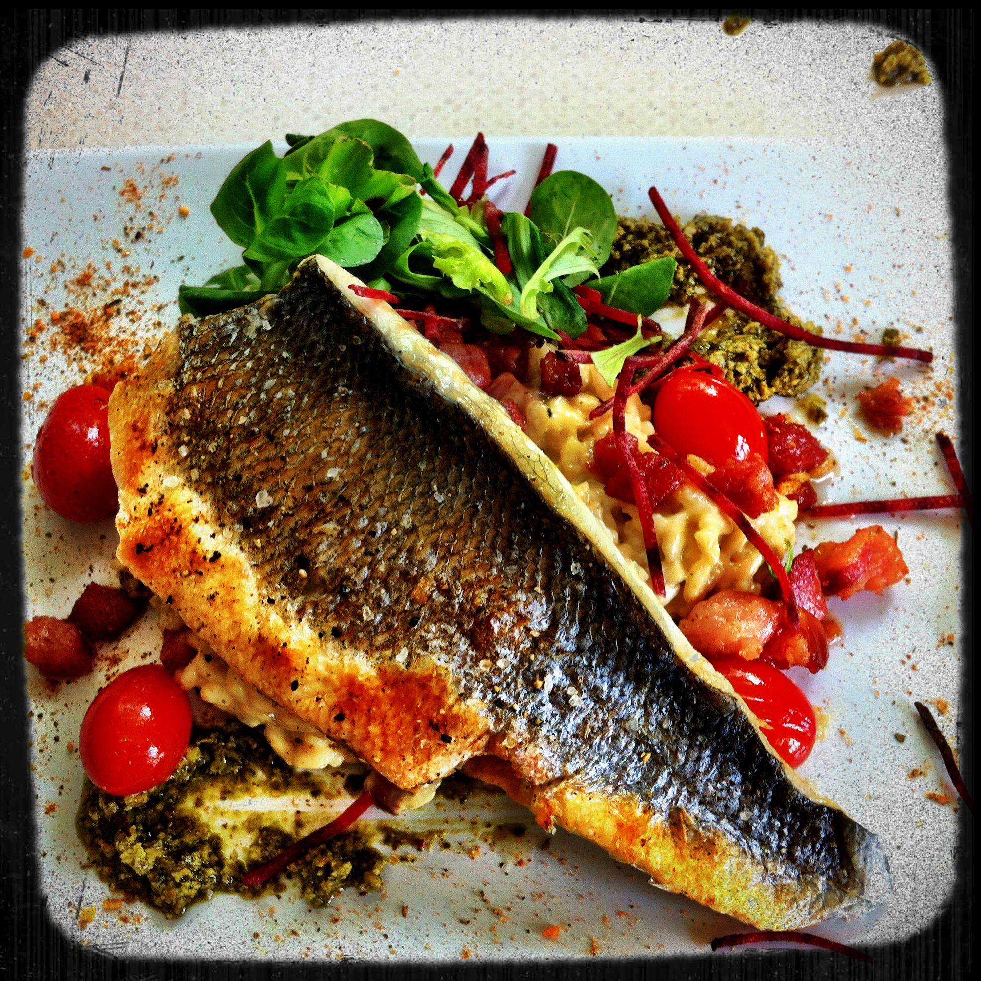 Bass with Tomato Pesto